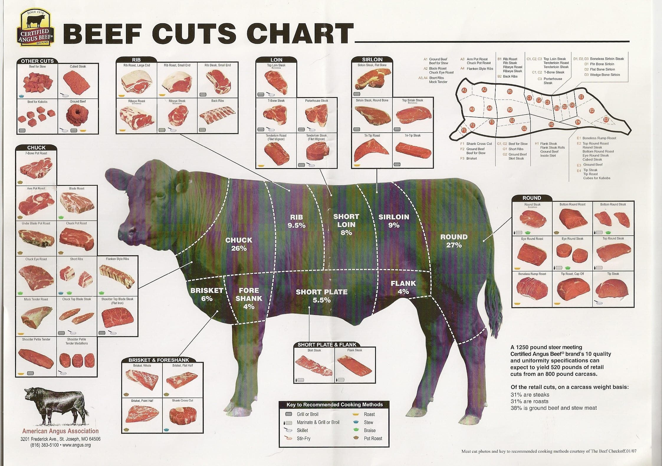 beef cuts charts where does a cut come from  where and what in the world Colorado Travel Guide Books Colorado Tourism