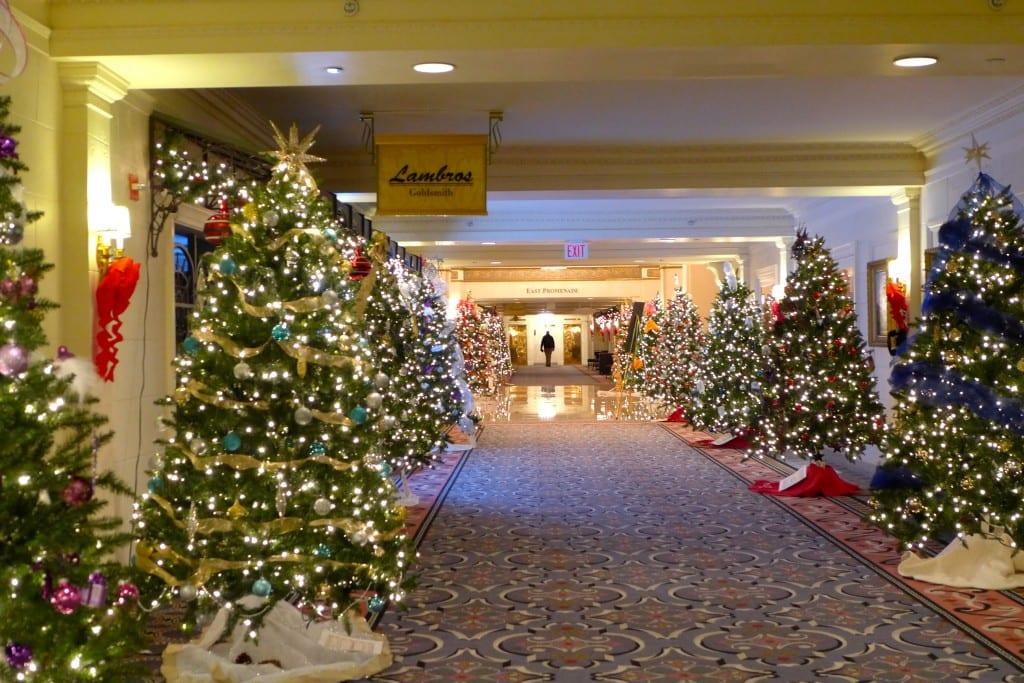 A Hall of Christmas Trees Photo: Maralyn D. Hill