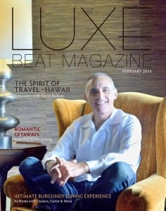 Luxe-Beat-Magazine-February-2014-Edition-COVER-236x300
