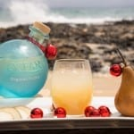 Cheers! It's Time to Celebrate the Holidays with Ocean Organic Vodka